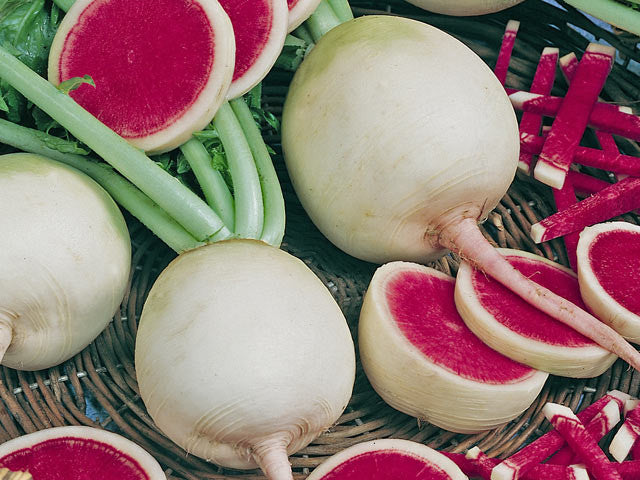 Watermelon Radish - Bulk Vegetable Seeds - 50 grams