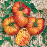 Big Rainbow Tomato - Lycopersicon Esculentum - Heirloom Vegetable - 10 Seeds