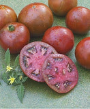 Black Prince Tomato - Lycopersicon Esculentum - Russian Heirloom Vegetable - 5 Seeds