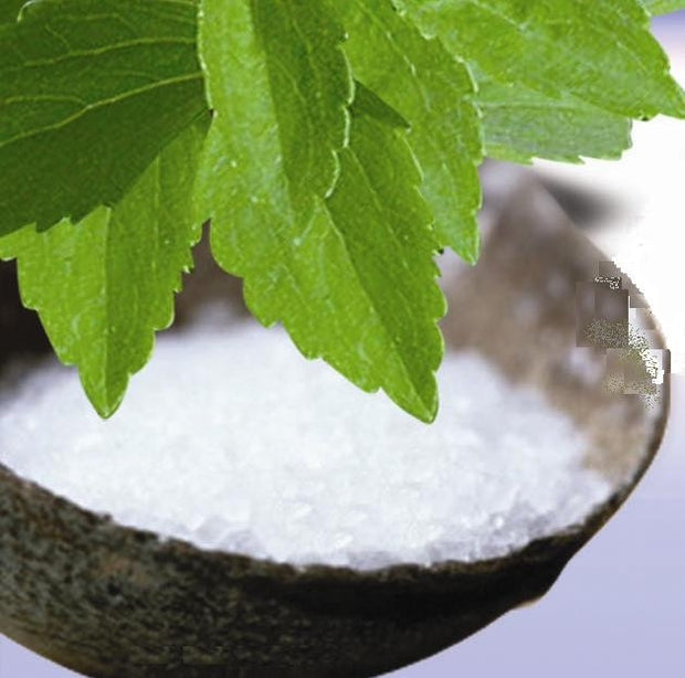 Stevia - Stevia rebaudiana - 300 X Sweeter than Sugar - Herb - Seeds
