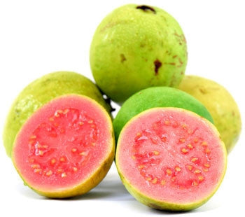 Guava Fruit Tree - Psidium Guajava - Red Fleshed Guava - 5 Seeds