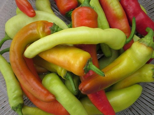 Hungarian Sweet Wax Pepper - Capsicum Annuum - Sweet Pepper Vegetable - 30 Seeds