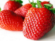 Giant Strawberry - Fragaria A. Maximus - Exotic Fruit - 5 Seeds