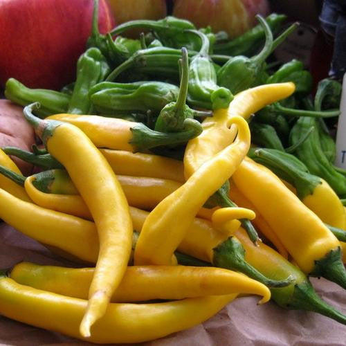 Golden Cayenne Chilli Pepper - Capsicum annum - Vegetable - 10 Seeds