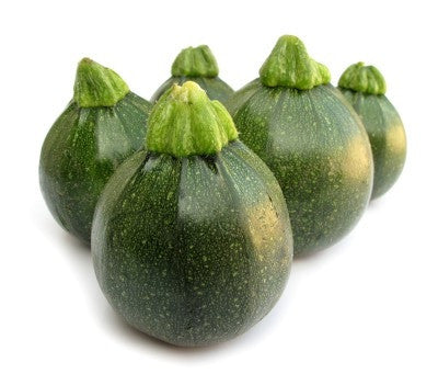 Round Zucchini - Cucurbita Pepo - Unique Vegetable - 10 Seeds