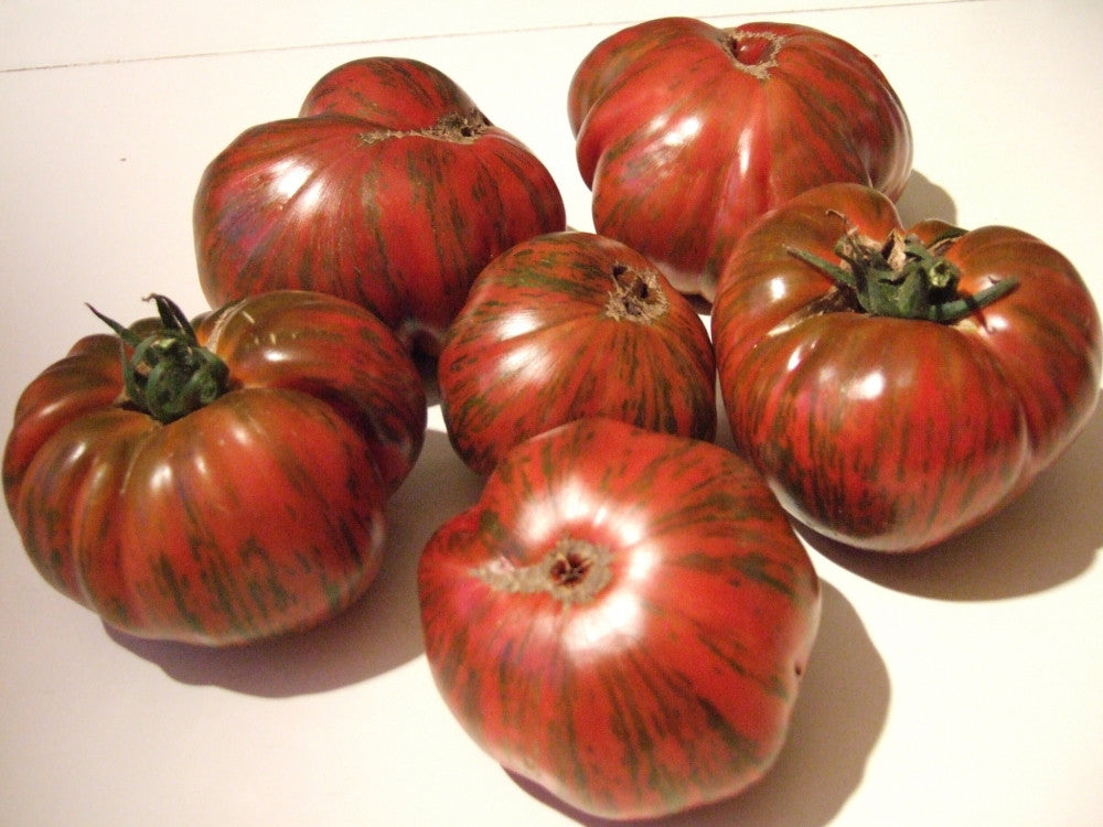 Chocolate Stripe Tomato - Lycopersicon Esculentum - Vegetables - 10 Seeds - ORGANIC