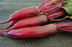 Cylindra Beetroot - Heirloom Vegetable - 50 Seeds
