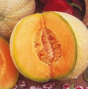 Iroquois Melon -  Heirloom Fruit - Cucumis Melo - 20 Seeds