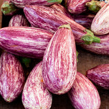 Pinstripe Eggplant - Solanum melongena - Vegetable - 5 Seeds - The Patio Vegetable Collection