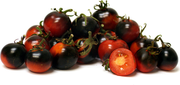 Indigo Cherry Drops Cocktail Tomato - Bulk Vegetable Seeds - 100 seeds