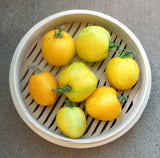 Yellow Furry Boar Tomato Heirloom Vegetable - Lycopersicon Esculentum - 10 Seeds - ORGANIC