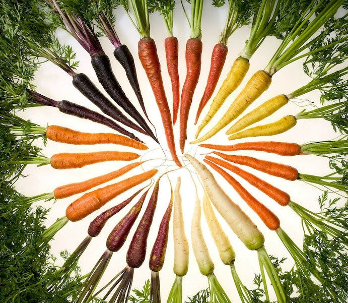 Snow White and the 7 Carrots - 8 Unique Varieties incl Heirloom Varieties - Package Deals