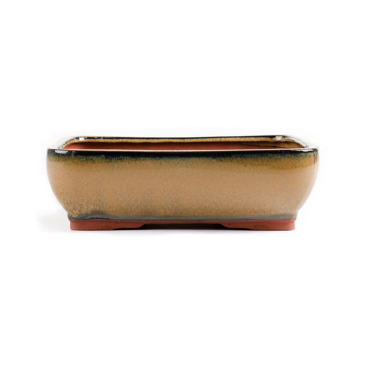 30cm x 25cm x 10cm - Glazed Bonsai Container - Mustard