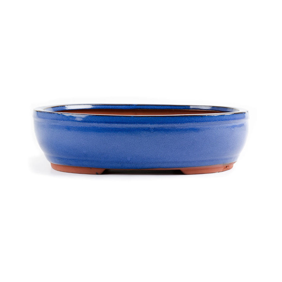 30cm x 24cm x 10cm - Glazed Bonsai Container - Blue