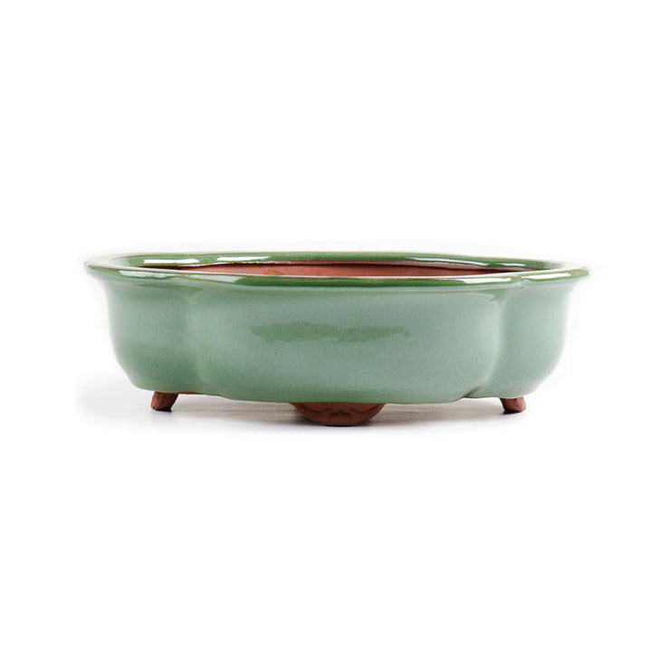 30cm x 24cm x 10cm - Glazed Bonsai Container - Green