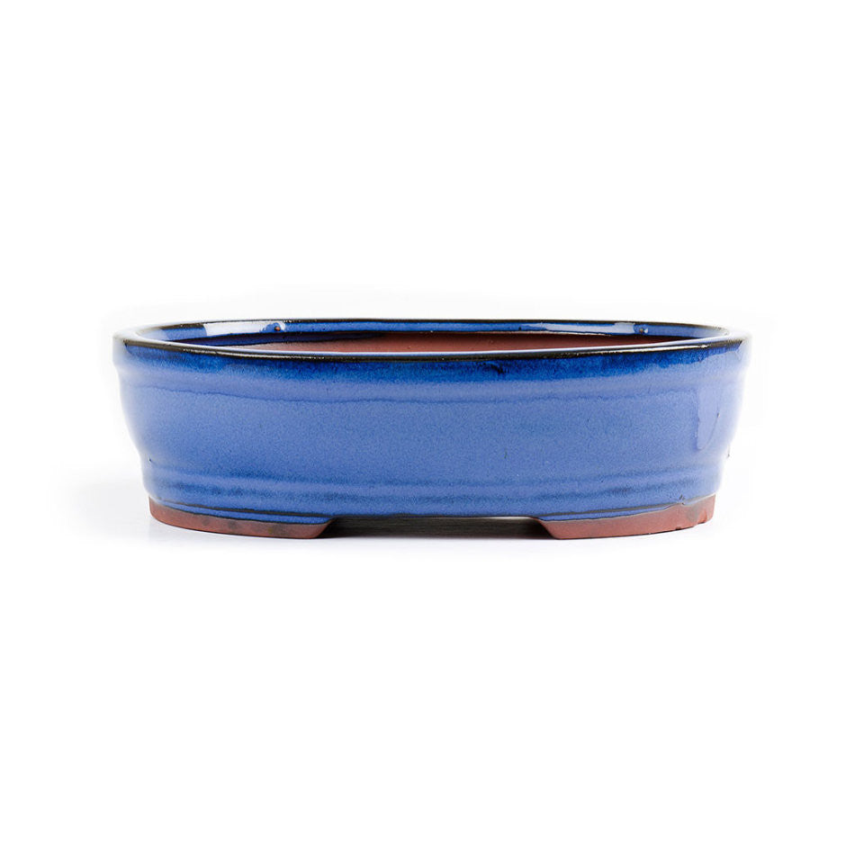 22cm x 17cm x 7cm - Glazed Bonsai Container - Blue