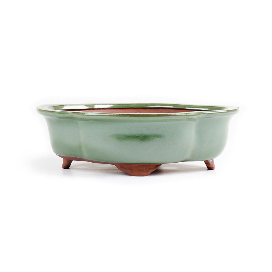 25cm x 21cm x 8cm - Glazed Bonsai Container - Green