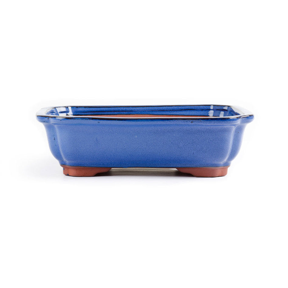 27cm x 21cm x 7cm - Glazed Bonsai Container - Blue