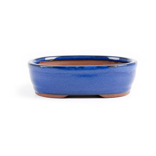 18cm x 14cm x 6cm - Glazed Bonsai Container - Blue