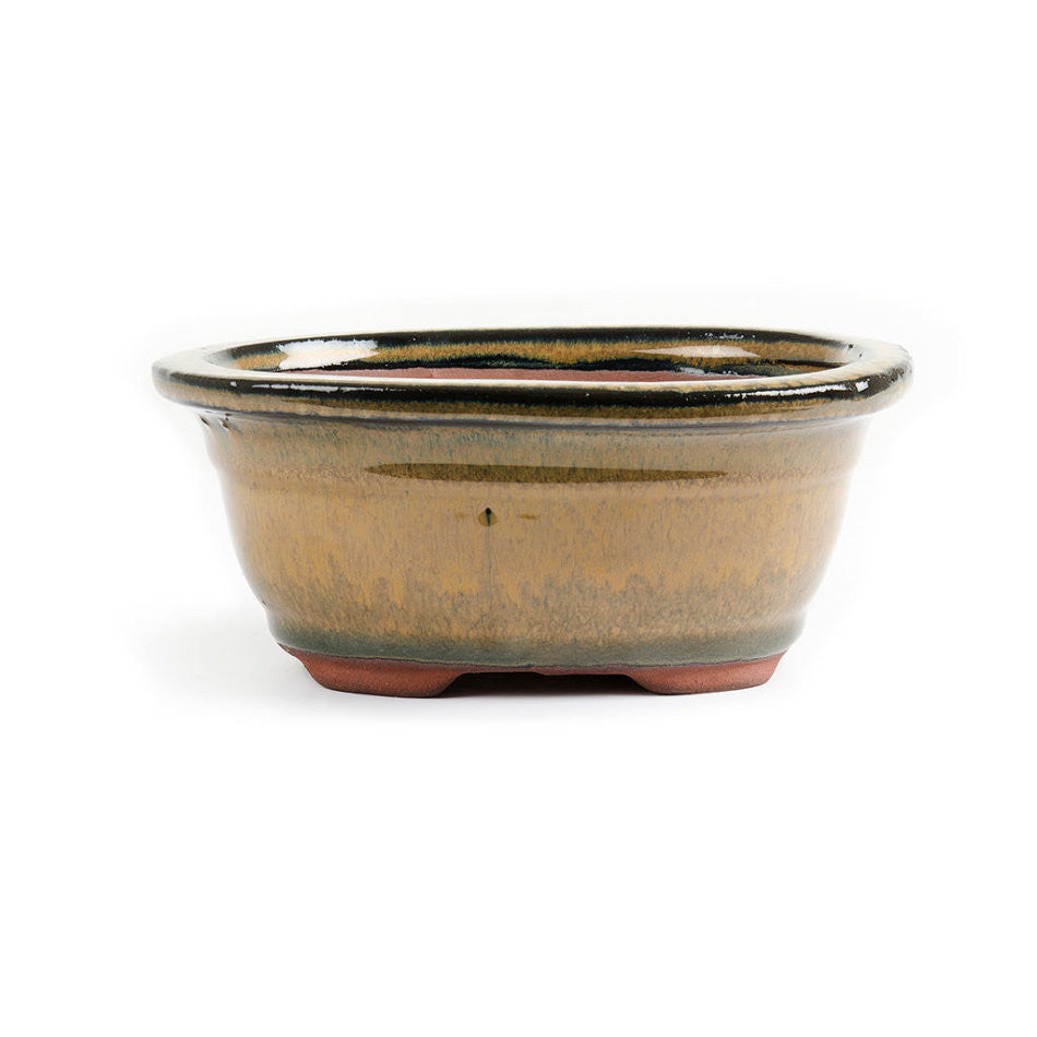 16cm x 13cm x 7cm - Glazed Bonsai Container - Mustard
