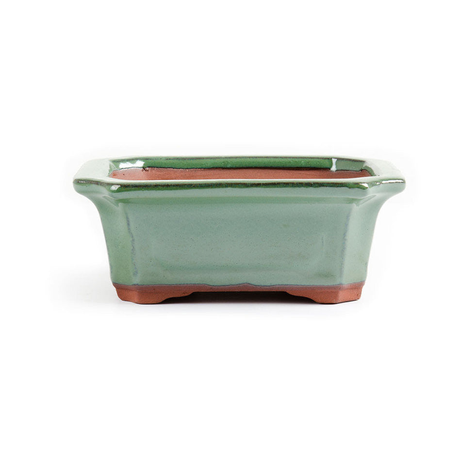 16cm x 12cm x 7cm - Glazed Bonsai Container - Forest Green