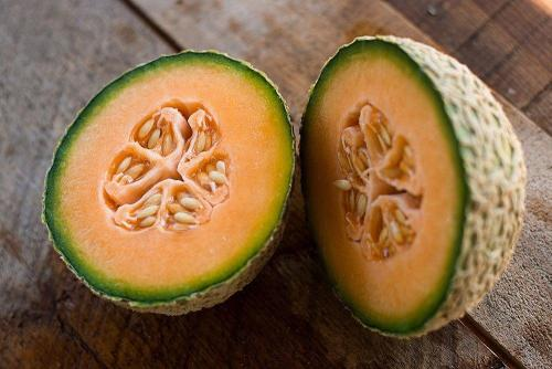 Honey Rock Melon  - Heirloom Vegetable / Fruit - Cucumis melo - 10 Seeds