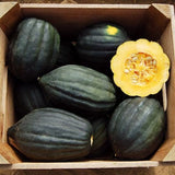 Table Queen Acorn Squash  - Heirloom Vegetable - Cucurbita pepo - 10 Seeds