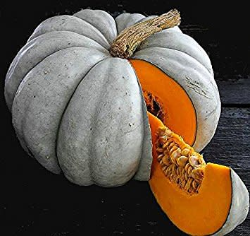 Jarrahdale Pumpkin - Heirloom Vegetable - Cucurbita maxima - 5 Seeds