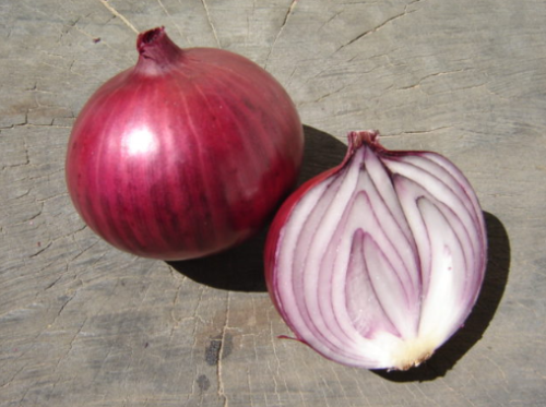 TG Red Onion - ORGANIC - Heirloom Vegetable - 200 Seeds