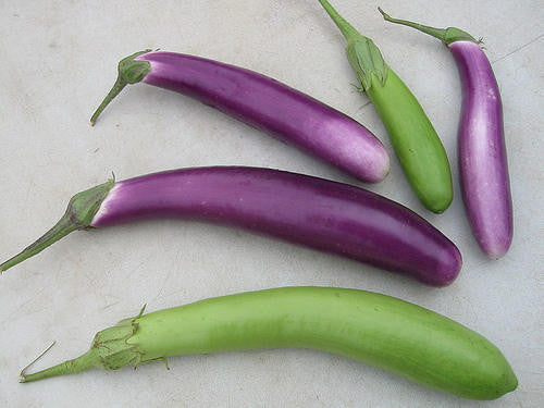 Long Purple Eggplant - Solanum Melongena var. Esculentum - 40 Seeds