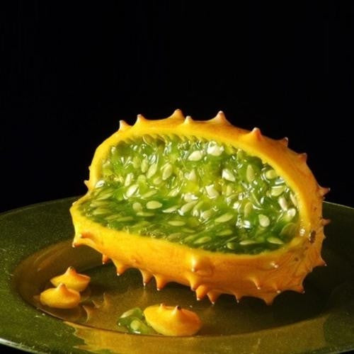 "Cucumis Metuliferus - African Horned Cucumber ""Kiwano"" - South African Vegetable - 10 Seeds"