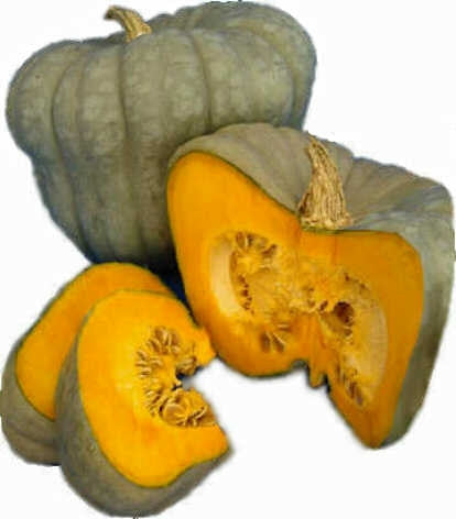 Queensland Blue Pumpkin - Vegetable - Cucurbita Maxima - 5 Seeds