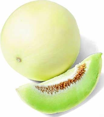 Honeydew Green Melon - Fruit - Cucumis Melo var. Inodorus - 20 Seeds