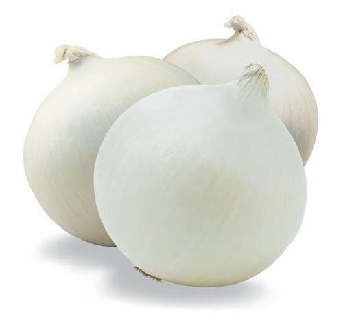 White Creole Onion - Allium Cepa - Vegetable - 100 Seeds