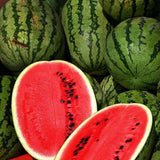 All Sweet Watermelon - Citrullus Lanatus - Fruit - 15 Seeds