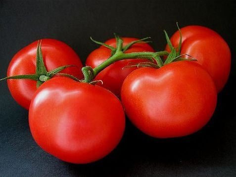 Ace 55 Tomato - Heirloom Vegetable - 50 Seeds