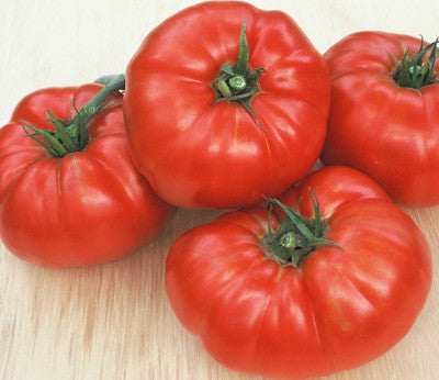 Beefsteak Tomato - Heirloom Vegetable - 50 Seeds