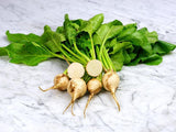 White Albino Beetroot - Heirloom Vegetable - 30 Seeds