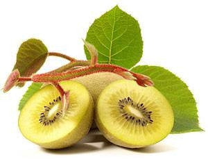 Actinidia Chinensis - Kiwi Fruit variety - Exotic Shrub - 10 Seeds