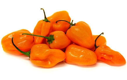 Orange Habanero Chilli Pepper - ORGANIC - Heirloom Vegetable - 20 Seeds