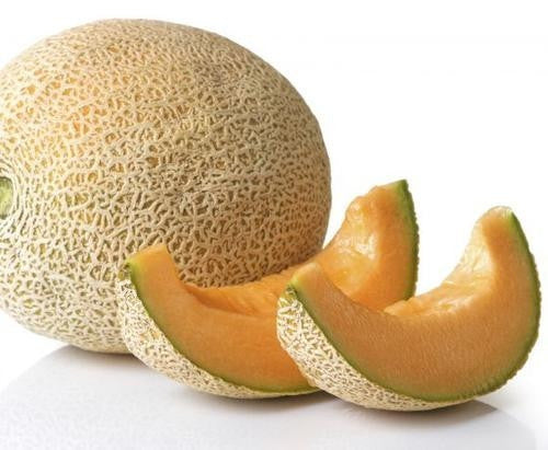 Hales Best Jumbo Melon / Cantaloupe - ORGANIC - Heirloom Vegetable / Fruit - 20 Seeds