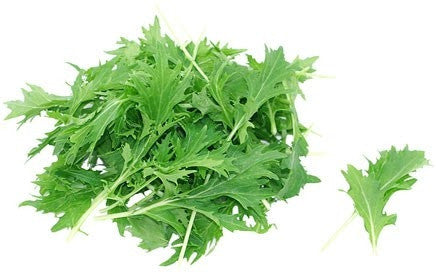 Mizuna Mustard Greens - ORGANIC - Heirloom Vegetable - 200 Seeds