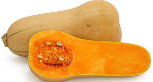 Waltham Butternut Squash - ORGANIC - Heirloom Vegetable - 10 Seeds