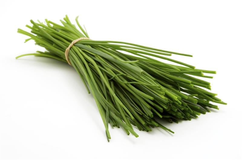 Chives - ORGANIC - Herb - 100 Seeds