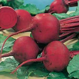 Detroit Beetroot - Bulk Vegetable Seeds - 200 grams