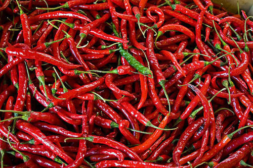 Cayenne Chilli Pepper - Bulk Vegetable Seeds - 20 grams