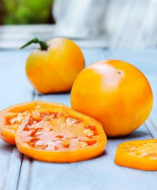 Jubilee Tomato - Bulk Vegetable Seeds - 200 seeds
