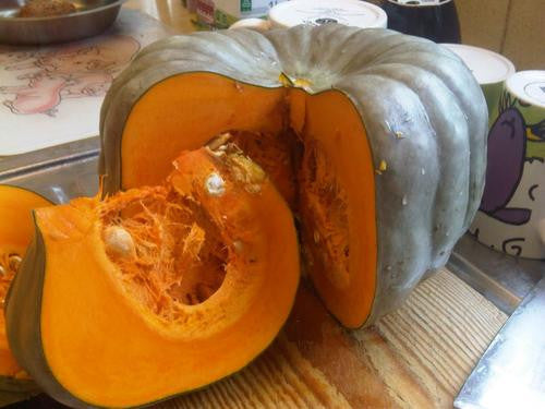Queensland Blue Pumpkin - Bulk Vegetable Seeds - 100 grams