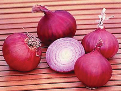 Red Creole Onion - Bulk Vegetable Seeds - 50 grams