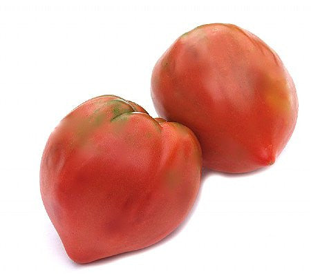 Ox Heart Tomato - Bulk Vegetable Seeds - 10 grams